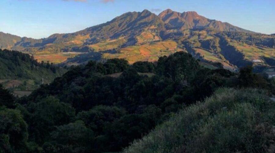 Historia de la Producción de Café en Finca Don Lenco